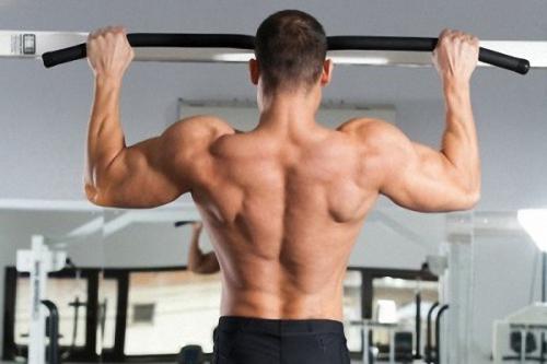 Работа на мышцы рук и спины
