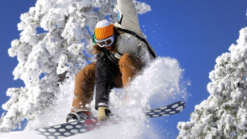 Катание на сноуборде на фоне деревьев