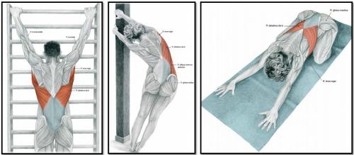 Схема выполнения упражнений
