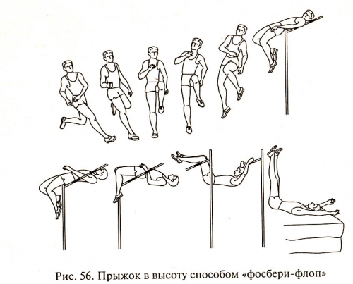 Фосбери-флоп