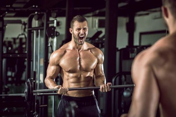 Мышцы, которые работают при отжимании