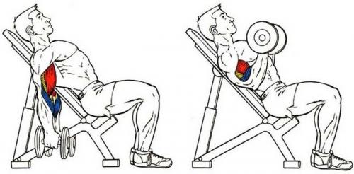 Эффективное упражнение