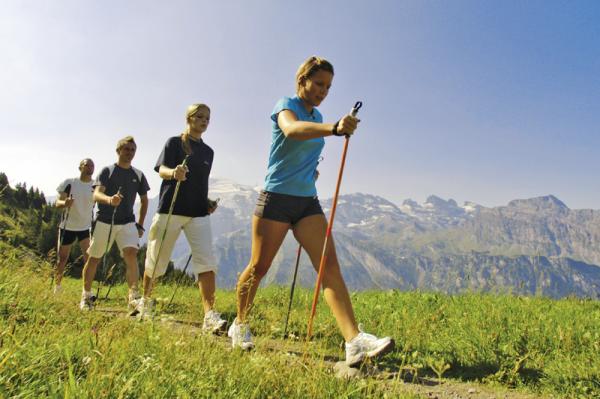 Группа людей занимается скандинавской ходьбой
