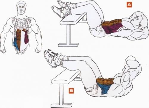 Схема правильного выполнения упражнений